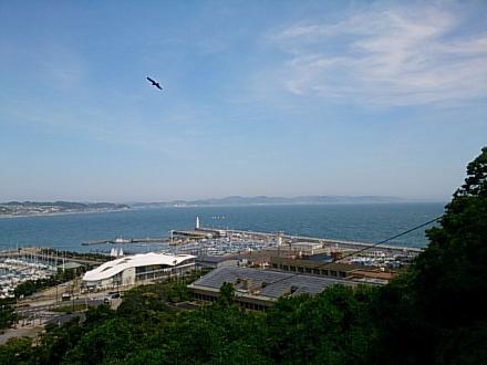 江ノ島1505140021