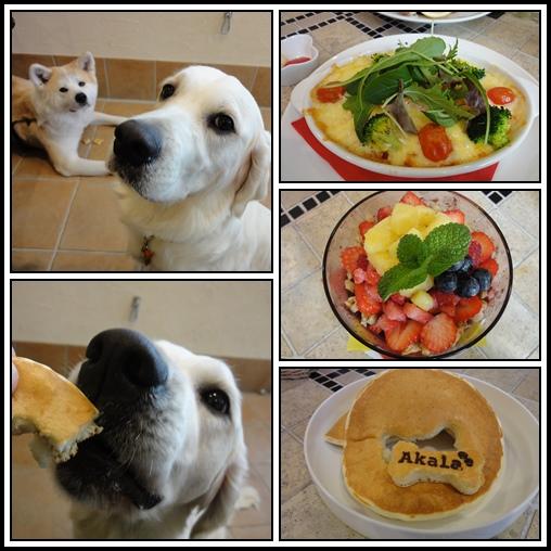 cats-1_2015011501153780c.jpg