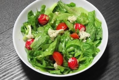 赤と緑のクリスマスサラダ