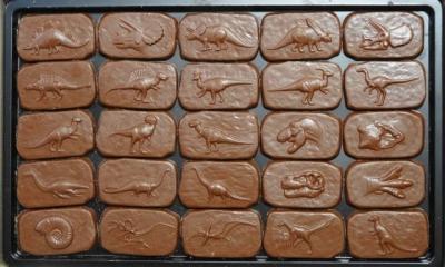 恐竜チョコ25種