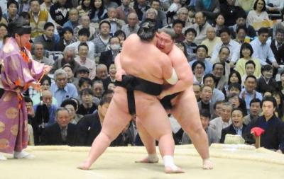 照ノ富士vs逸ノ城 水入りの大相撲
