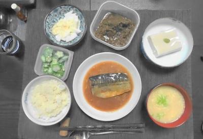 サバのマクロビ和食