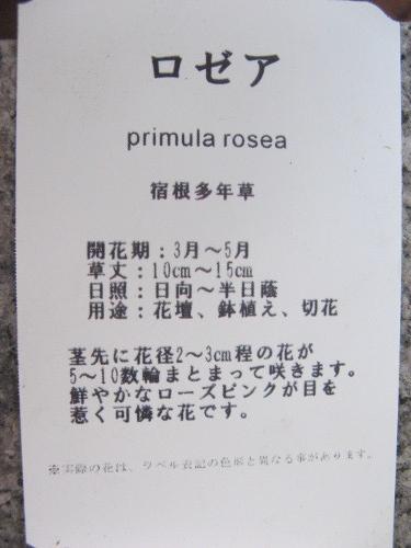 20150322- (3)