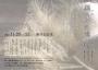 「絹糸の記憶」チラシ2