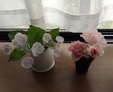 紫陽花とラ・マリエ♡