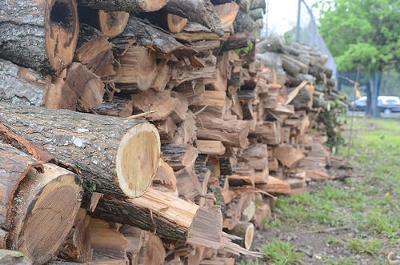 母「与作!もう木を切るの止めなさい!」