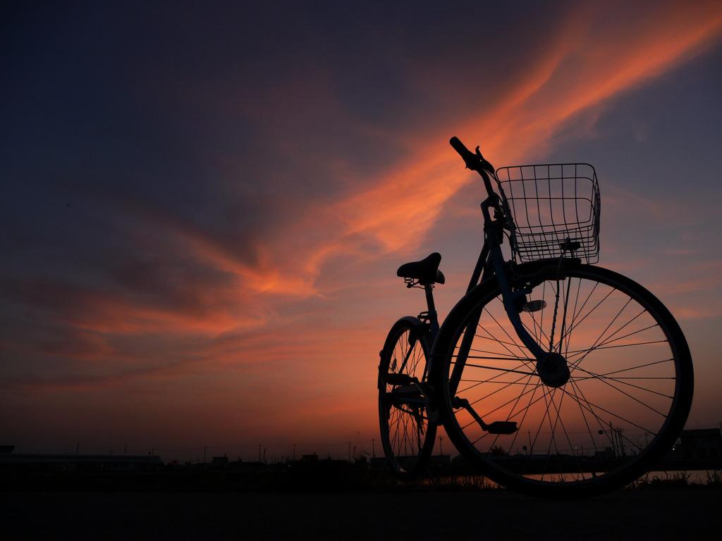 夕暮れの自転車