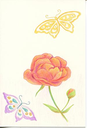 ぬり絵「薔薇と蝶」