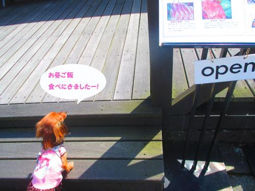 2015-03-hakone30.jpg