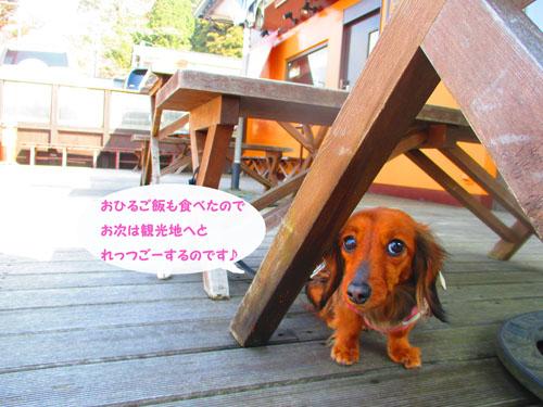 2015-03-hakone48.jpg