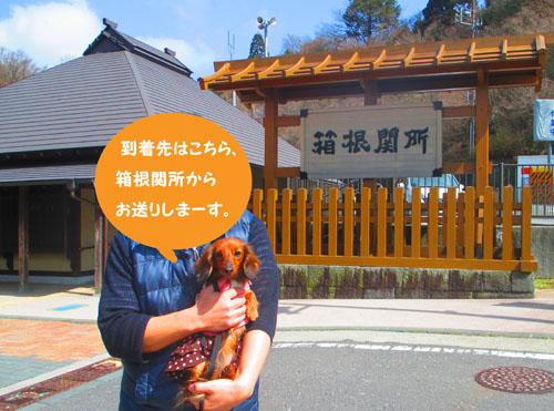 2015-03-hakone5.jpg