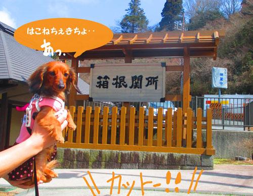 2015-03-hakone6.jpg