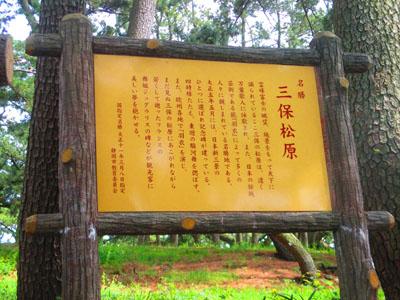 2015-05-sizuoka12.jpg