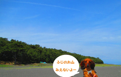 2015-05-sizuoka9.jpg