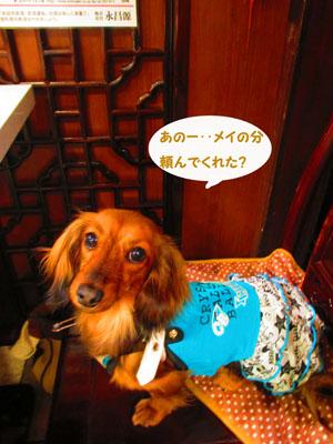2015-05-yokohama16.jpg