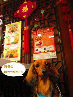 2015-05-yokohama17.jpg