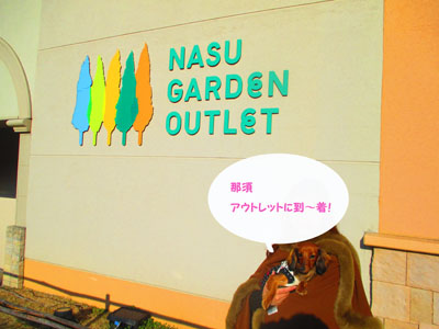 sasikomi2.jpg