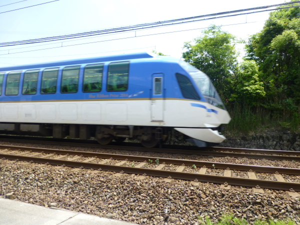 P1050430.jpg
