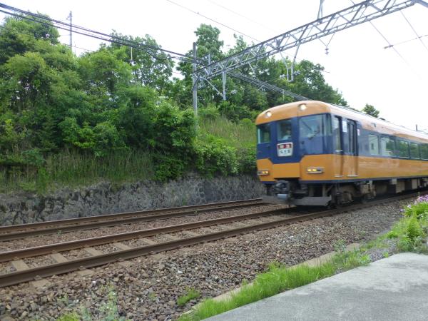 P1050444.jpg