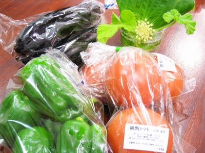 150617 野菜