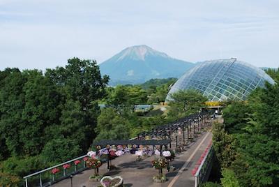 大山とドーム