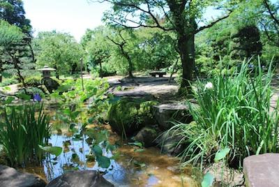 岡山バラ園和風
