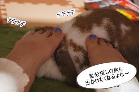 DSC09460_20150613181819211.jpg