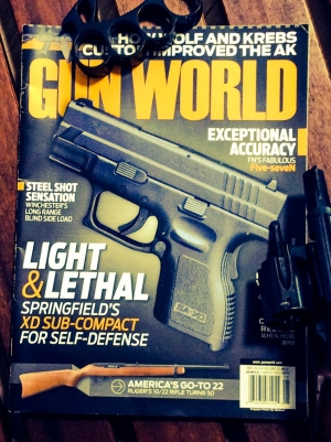Gun world3