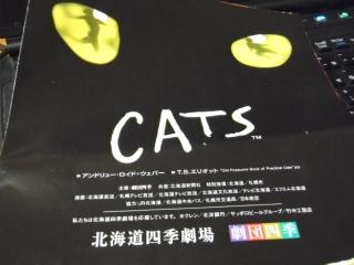 2015_0311catssk0001.jpg