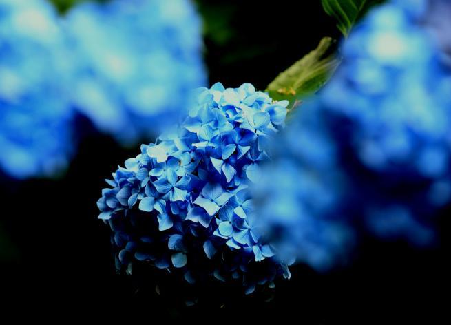 北鎌倉+030aa_convert_20150616034451