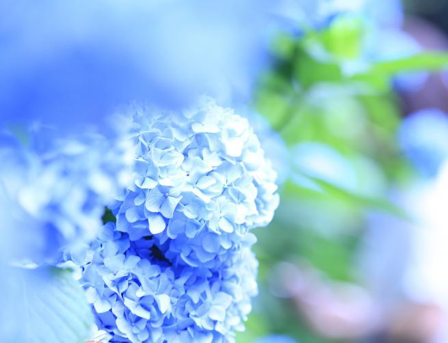 北鎌倉+009aa_convert_20150616034140