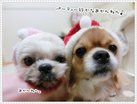 クリスマス2014a