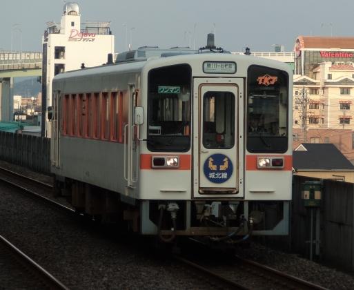 P5240083-b.jpg
