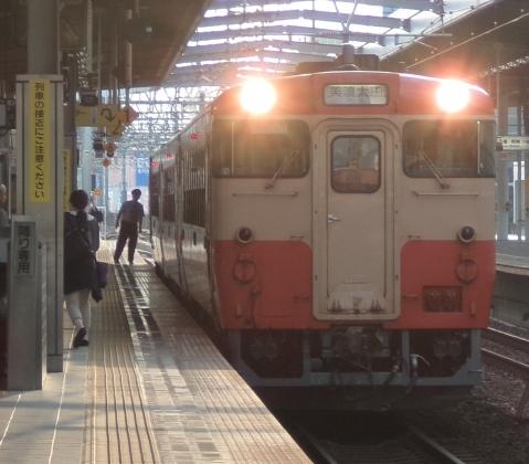 P6200384-b.jpg