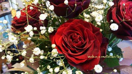 for20150117_002_s.jpg