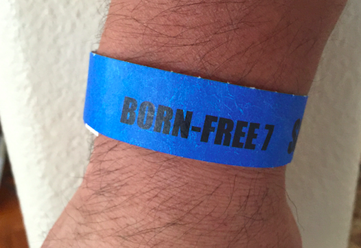 Born Free 7