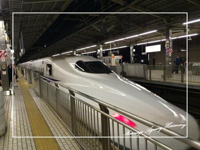 201504_meeting_miyagi_3.jpg
