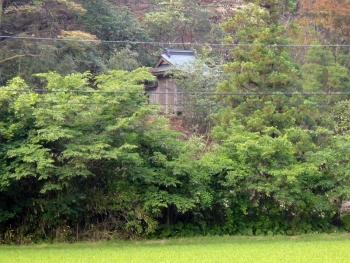 KUROKAWAODOU20150615.jpg
