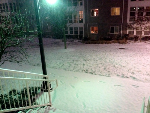 SNOW (500x375)