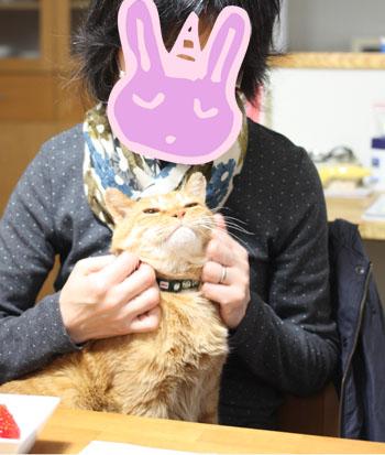 ソッチーと (6)