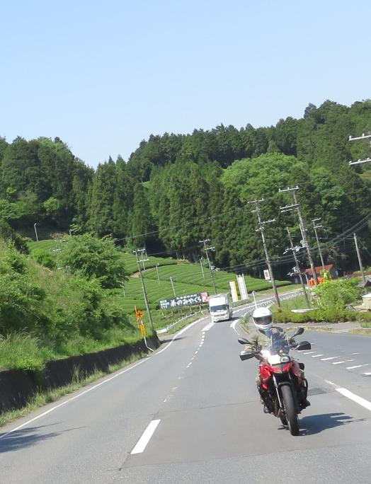 IMG_5096b.jpg