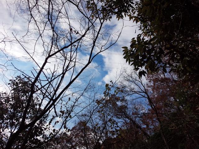 20141223③青い空