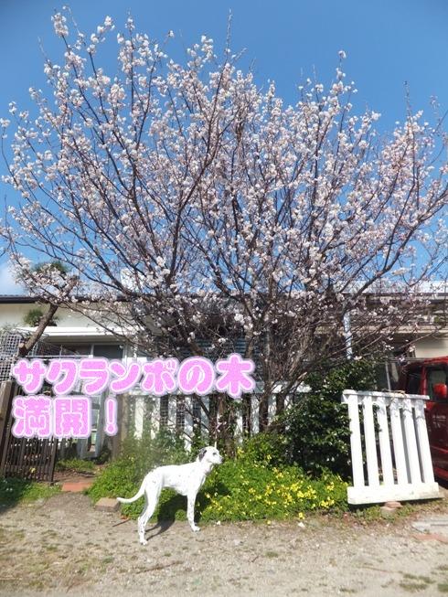 blog_0314_152725.jpg