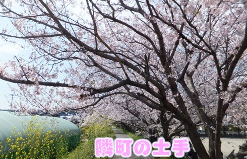 blog_0402_135857.jpg