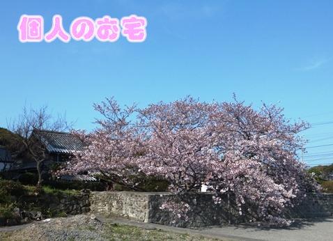 blog_0402_162922.jpg