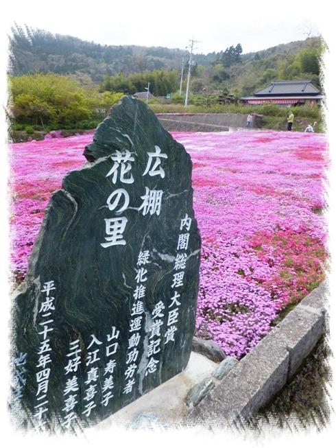 blog__133838.jpg