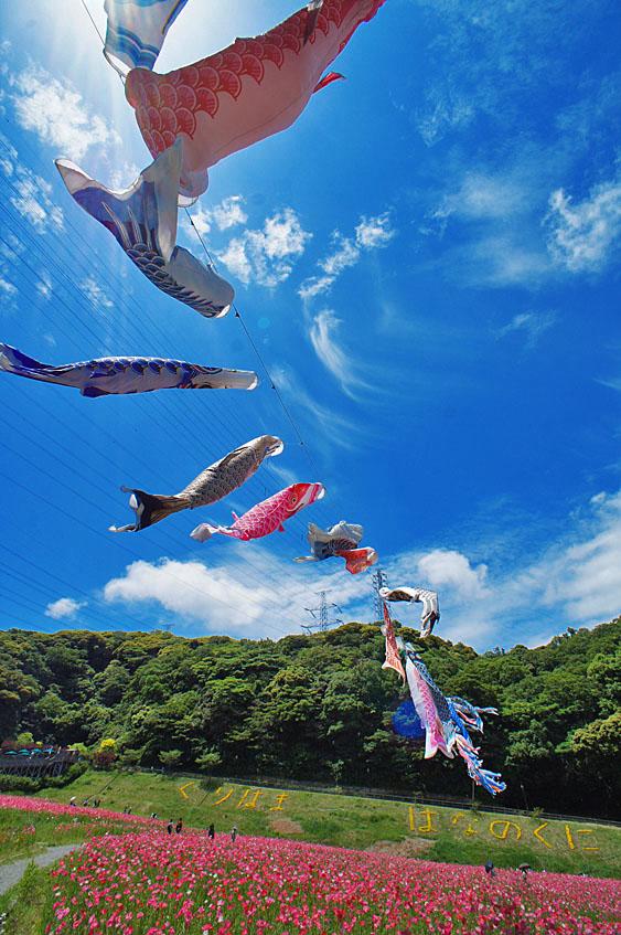 横須賀フォトコンテスト授賞式8