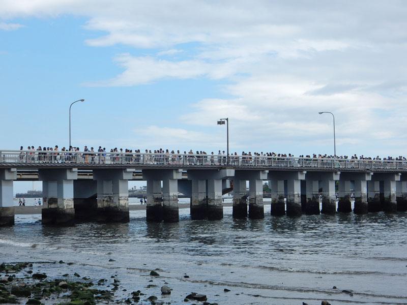 150504大潮の日江の島へ渡る6