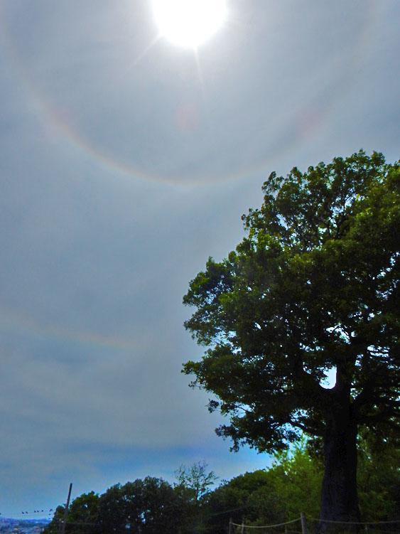 150522今日の日暈と環水平アーク3
