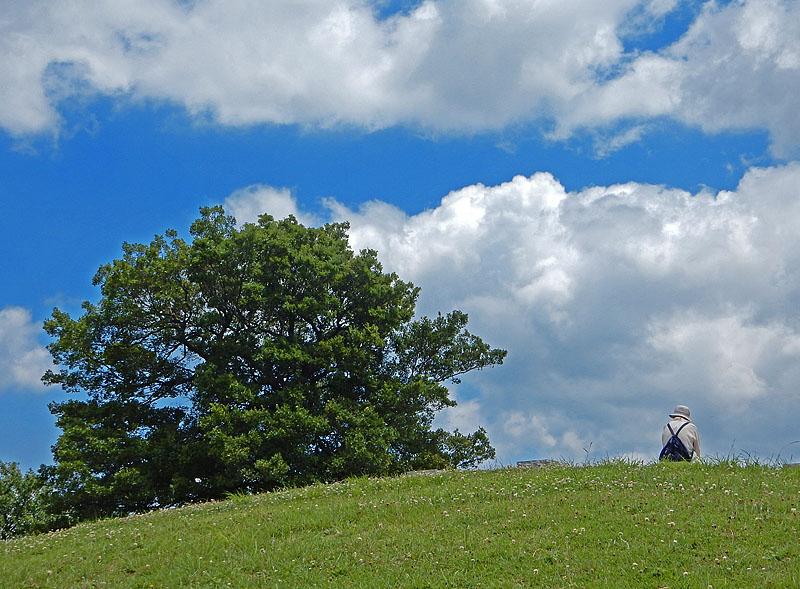150623梅雨の晴れ間の榎の丘2